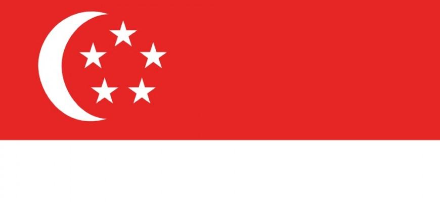 Singapore BEPS MLI