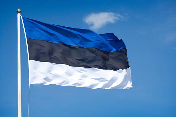 Estonia ratifies BEPS MLI to tackle MNE tax avoidance